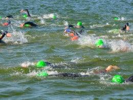 open water swimming gear
